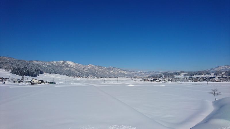 いきなりの大雪_d0141049_16595142.jpg