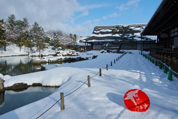 京都    1/15 嵐山  天龍寺_f0021869_00100425.jpg