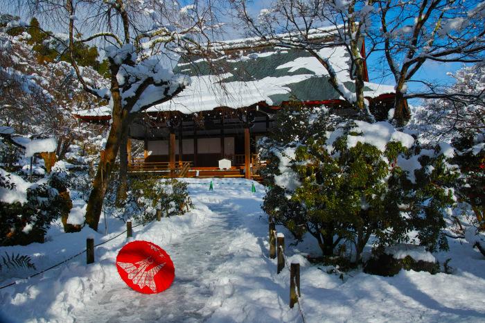 京都    1/15 嵐山  天龍寺_f0021869_00111750.jpg