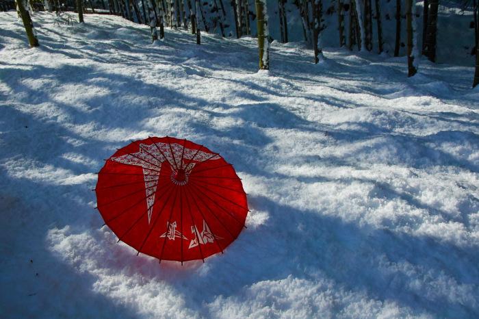 京都    1/15 嵐山  天龍寺_f0021869_00114797.jpg