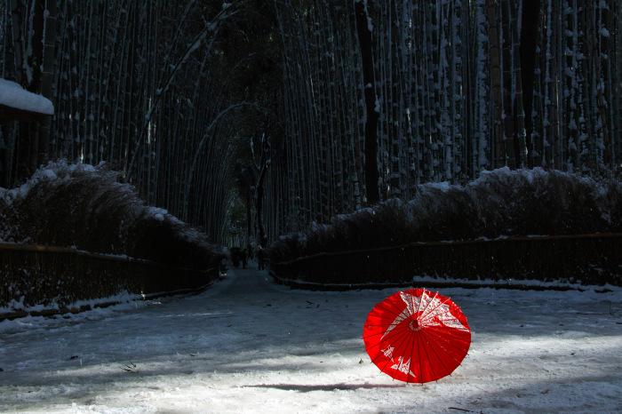 京都    1/15 嵯峨野 竹林の小径_f0021869_19430443.jpg