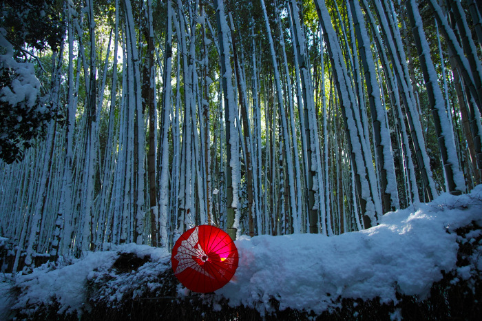 京都    1/15 嵯峨野 竹林の小径_f0021869_19435207.jpg