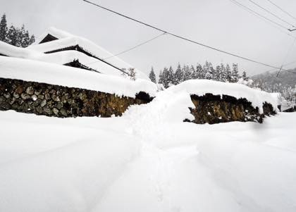 屋根の雪下しもしなくてすみそう......ヤレヤレです....._b0194185_22202077.jpg