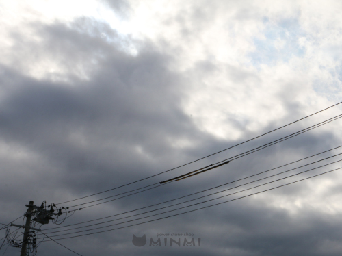 一日曇りの月曜日♪(#^^#)_c0140599_11385835.jpg
