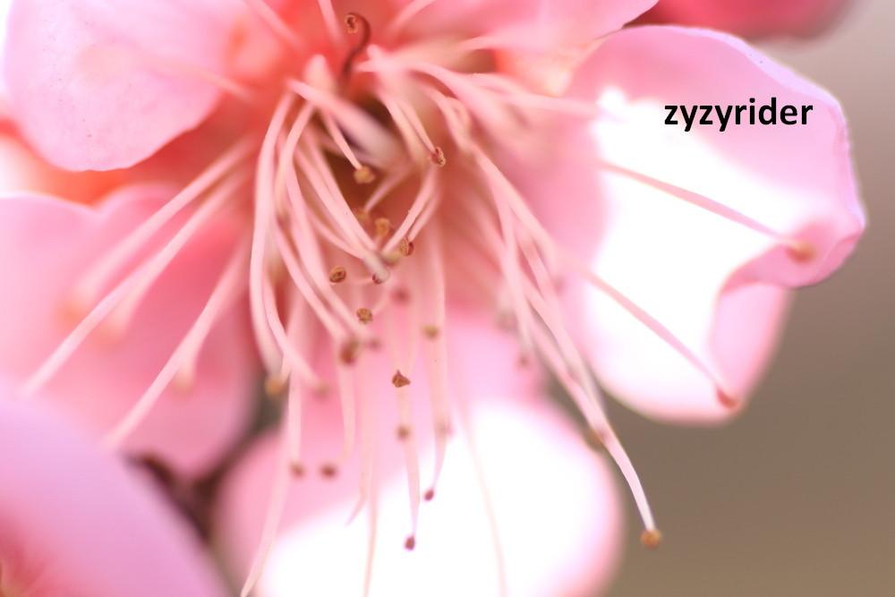 a0329801_09521803.jpg