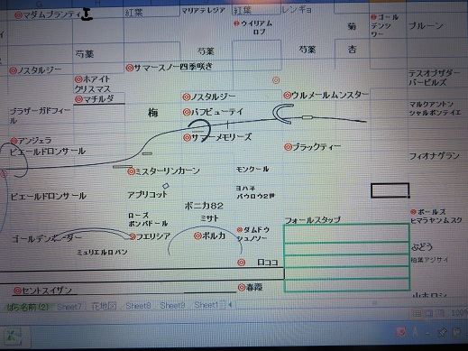 f0325309_20023180.jpg