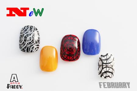 February NEW Design_e0284934_1044355.jpg