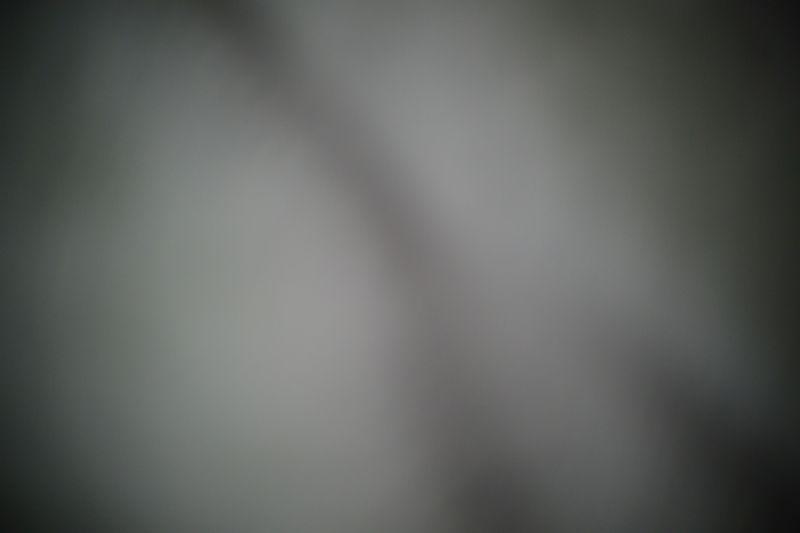 b0207491_1721829.jpg