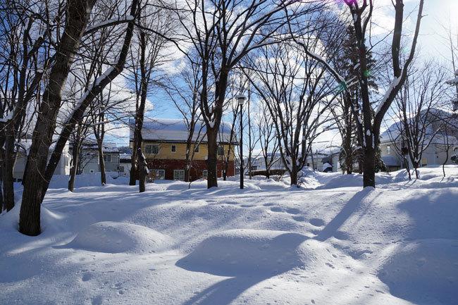 雪景色_d0162994_15430447.jpg