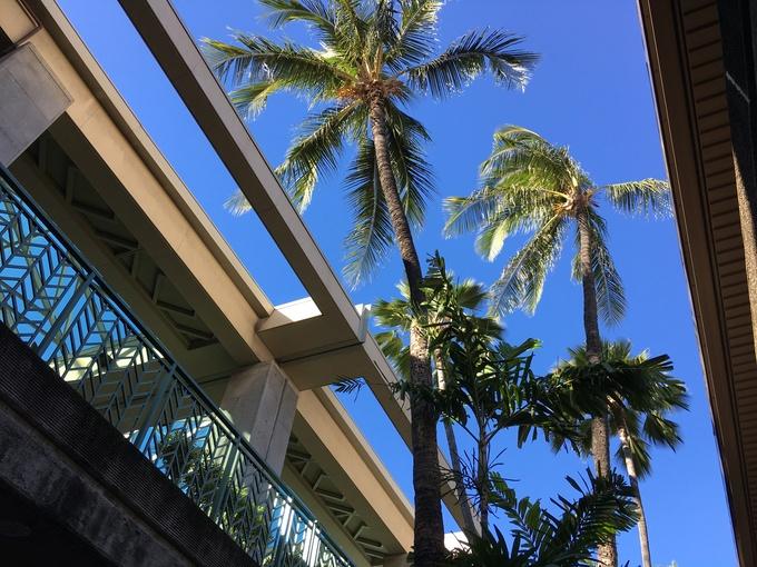 2017正月ハワイ~出発からVRBOバケレンハウスへ~_f0011498_10455830.jpg