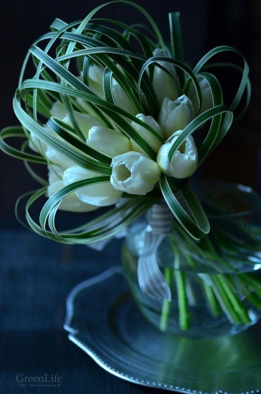 White Tulip_f0321522_09294511.jpg