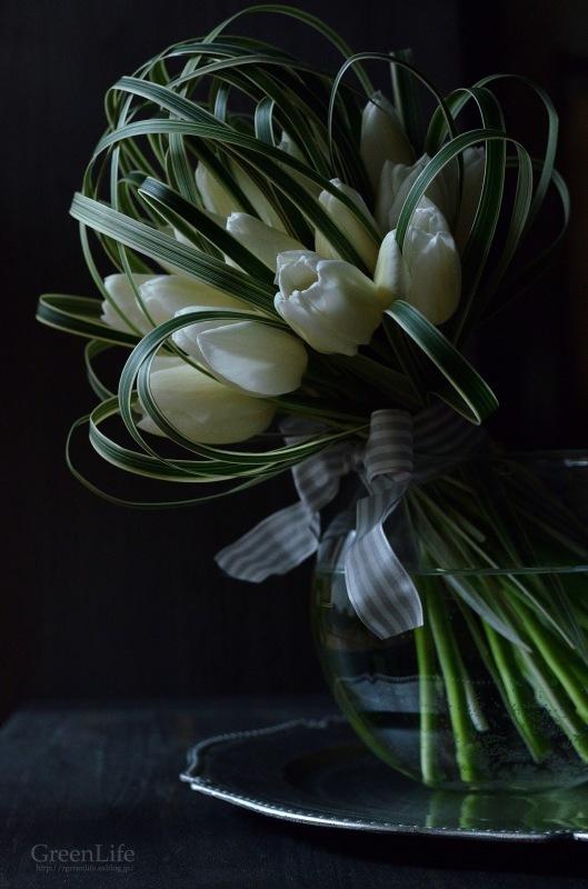 White Tulip_f0321522_09333959.jpg