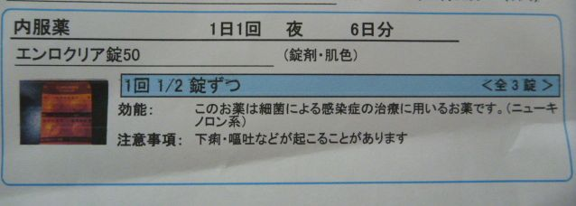 e0142430_14242011.jpg