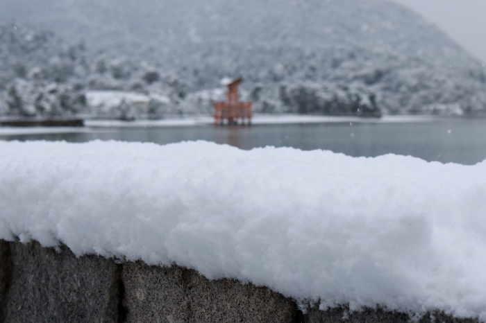 雪の宮島 広島旅行 - 11 -_f0348831_22555749.jpg
