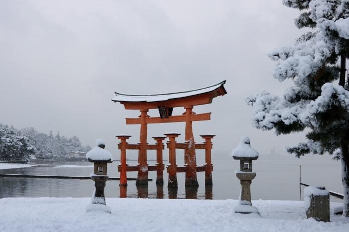 雪の宮島 広島旅行 - 11 -_f0348831_22560819.jpg