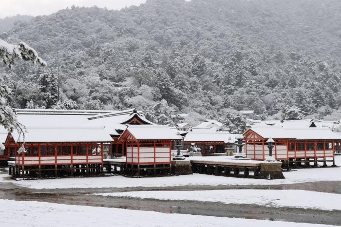 雪の宮島 広島旅行 - 11 -_f0348831_22562532.jpg