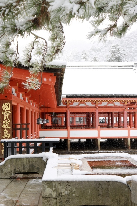 雪の宮島 広島旅行 - 11 -_f0348831_22563412.jpg