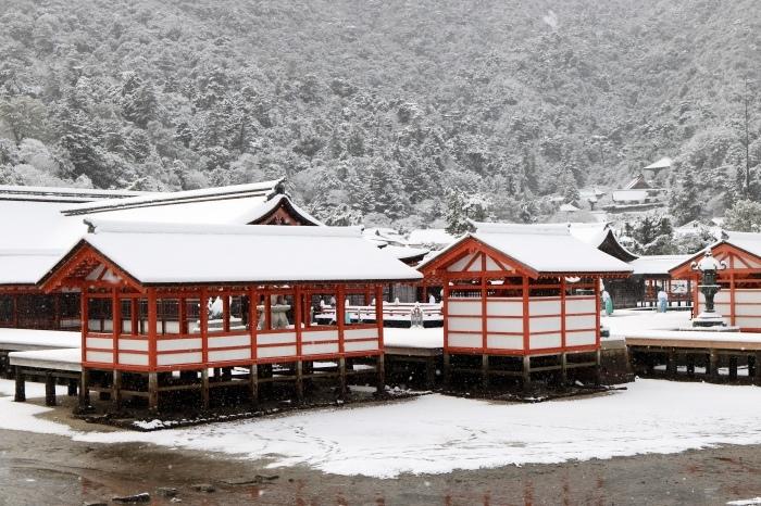雪の宮島 広島旅行 - 11 -_f0348831_22563972.jpg