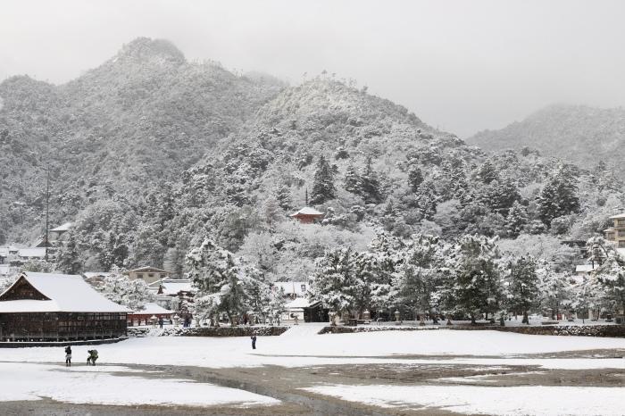 雪の宮島 広島旅行 - 11 -_f0348831_22564441.jpg