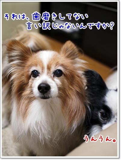 d0013149_00275411.jpg