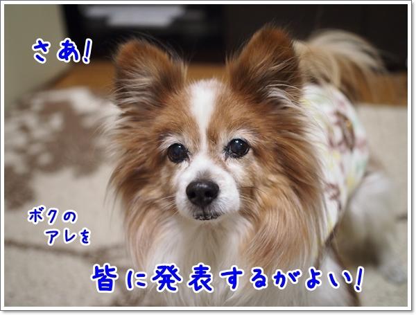 d0013149_01060697.jpg