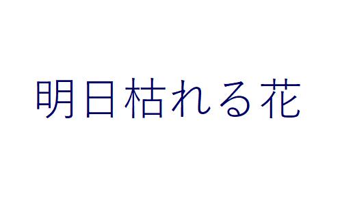 b0029488_1321579.jpg