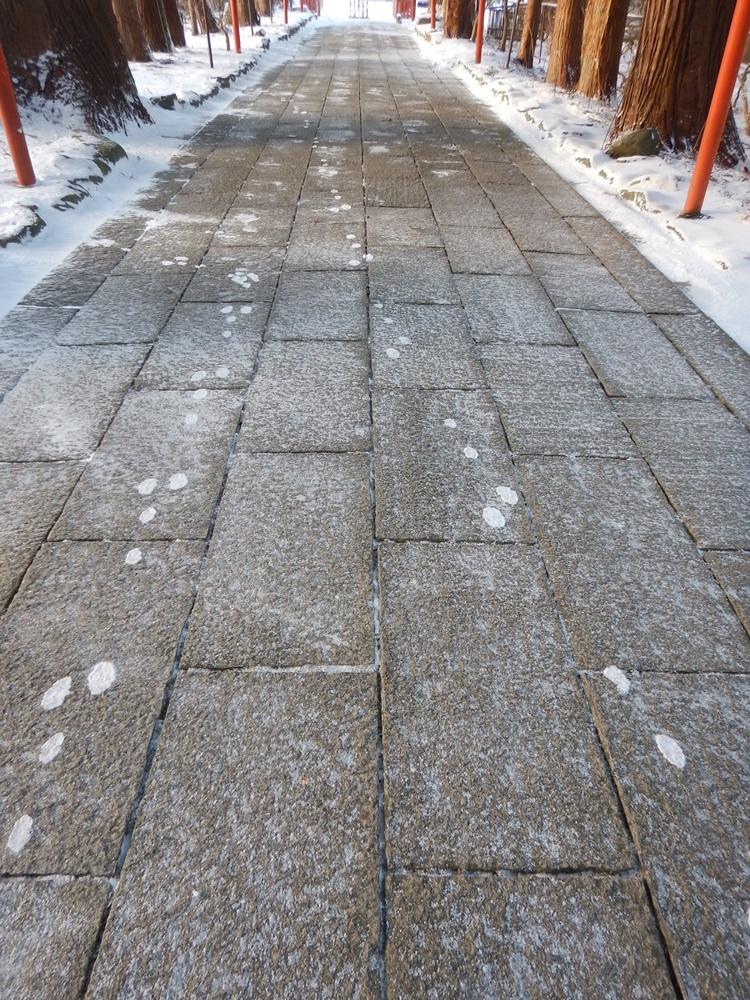 早朝除雪から_c0111229_21040113.jpg