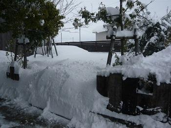 雪~♪_c0369433_17031904.jpg