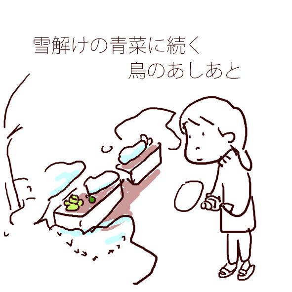 f0368538_10472899.jpg
