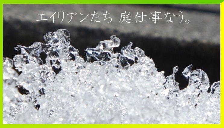 f0368538_14131205.jpg