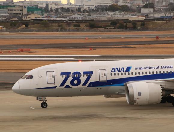 ANA(NH) B787-8型 JA810A_d0202264_19125339.jpg