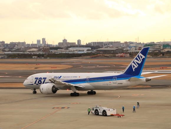 ANA(NH) B787-8型 JA810A_d0202264_19132487.jpg