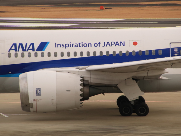 ANA(NH) B787-8型 JA810A_d0202264_1913710.jpg