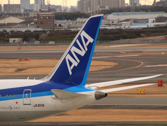 ANA(NH) B787-8型 JA810A_d0202264_1914428.jpg