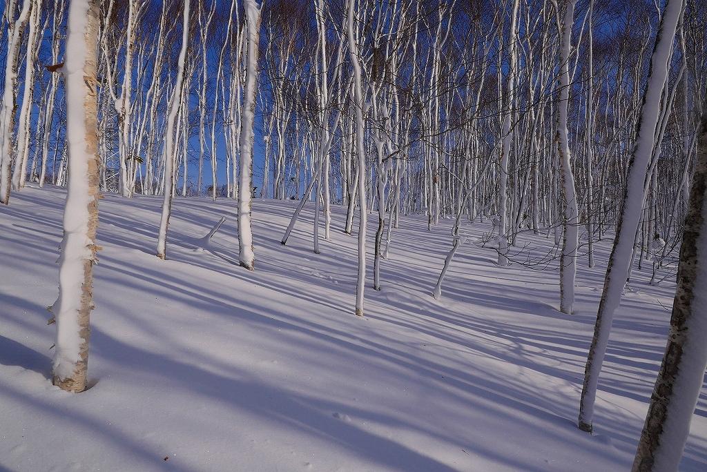 北白老岳と白老岳、2017.1.29-北白老岳編-_f0138096_17380686.jpg