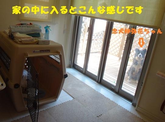 f0121712_08432949.jpg