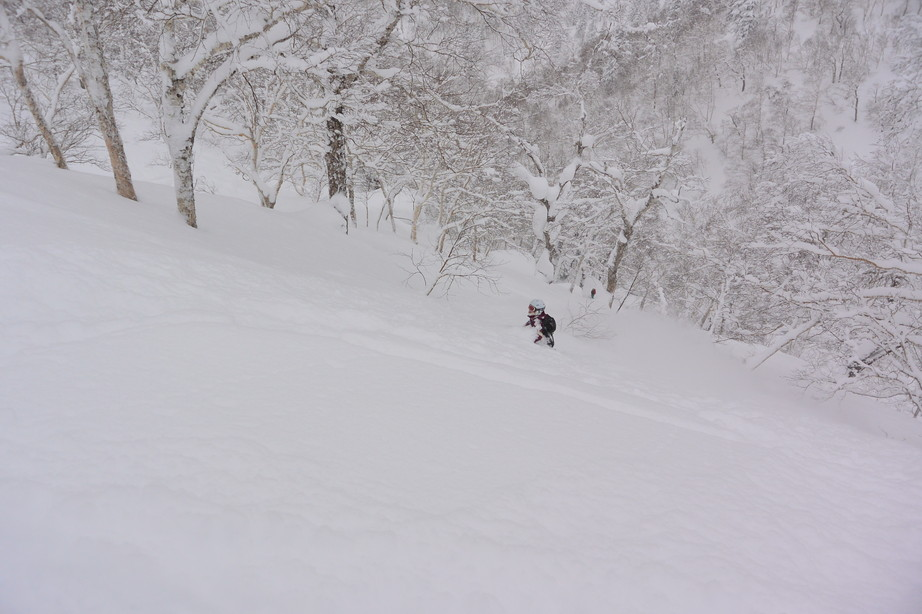 """2017年2月 『人生最高のパウダースノー』 February 2017 \""""The Best Powder Snow in My Life\""""_c0219616_234182.jpg"""