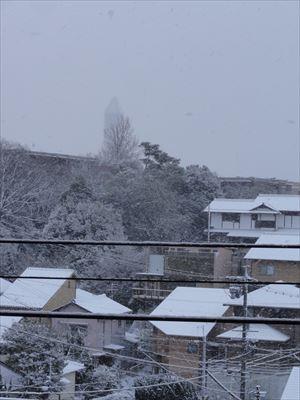 1月15日 雪_f0034816_782484.jpg