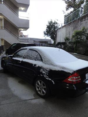 1月15日 雪_f0034816_79548.jpg
