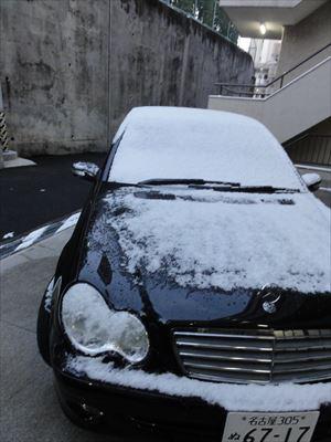 1月15日 雪_f0034816_79623.jpg
