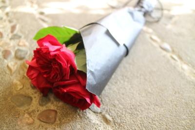 Flower Valentine_a0077025_13482977.jpg