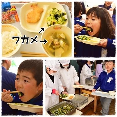 寒じめホウレンソウと食育授業なのだ☆_c0259934_16352489.jpg