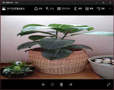 ブログの新管理画面と「フォト」にイライラ_e0289203_14530793.png
