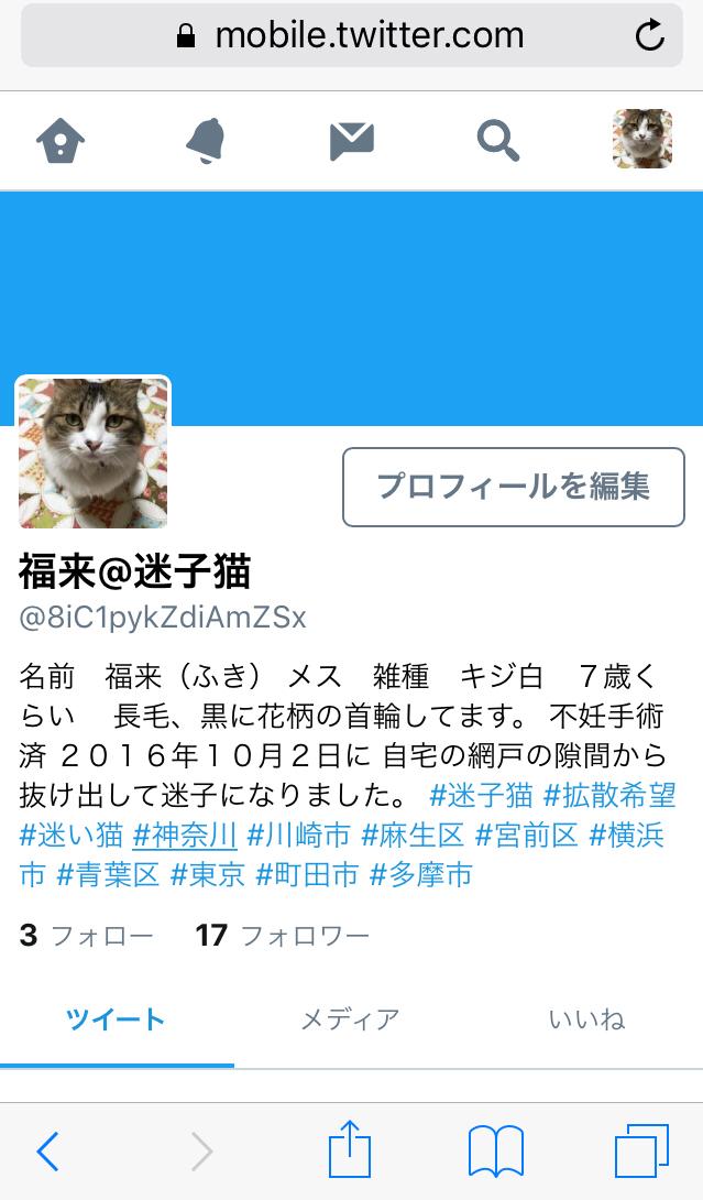 b0271157_11572061.jpg