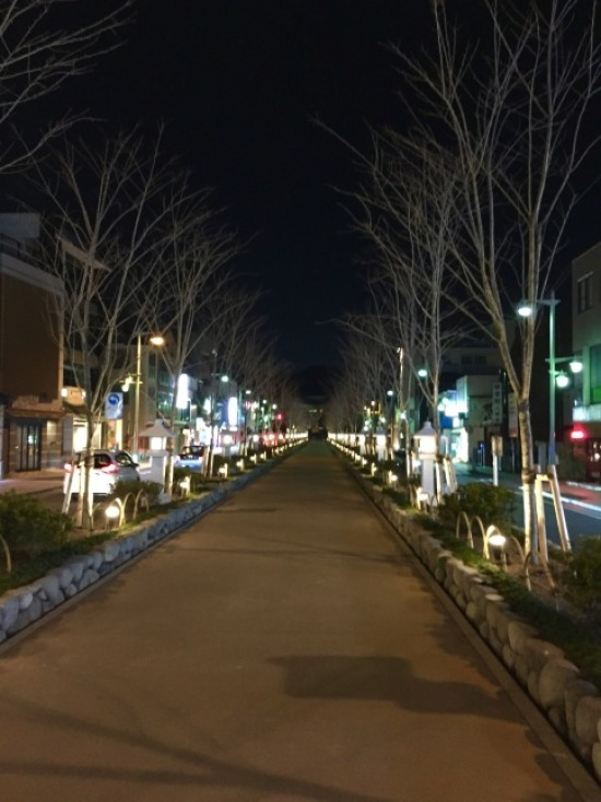 鎌倉心景「めじろ」_a0135581_22211513.jpg