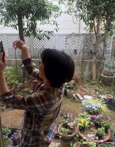 オーガニックガーデン講座*薔薇の育て方 Lesson3_b0138802_21175098.jpg