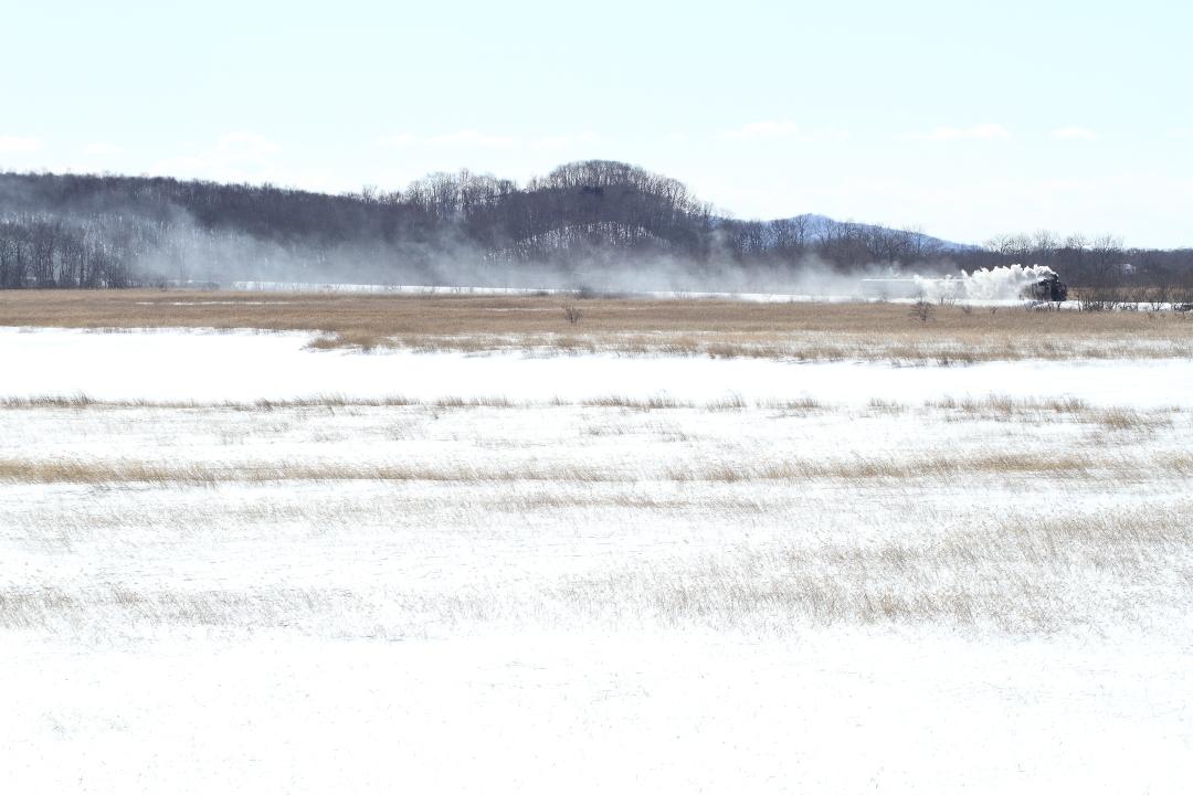 湿原に白煙が残った - 2017年冬・釧網線 -_b0190710_011559.jpg