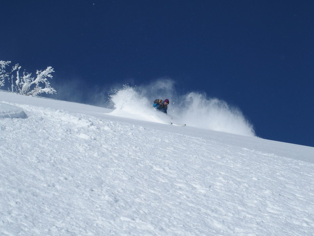 """2017年2月 『人生最良のパウダースキー・デー』 February 2017 \""""The Best Day of Powder Ski\""""_c0219616_22241323.jpg"""