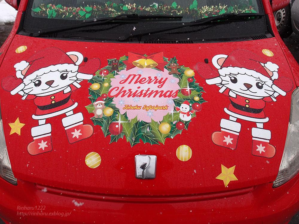 2016.12.17 東北サファリパーク☆クリスマススペシャルサファリカー_f0250322_22291518.jpg