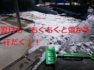 d0306248_11300383.jpg